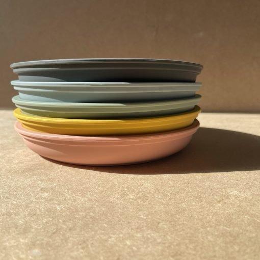Portion Plate BG2